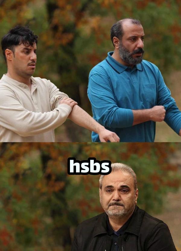 ... hsbs